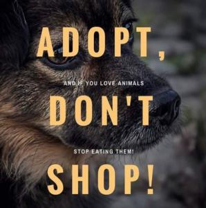 And if you love animals don't stop eating them
