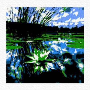 waterlillies1