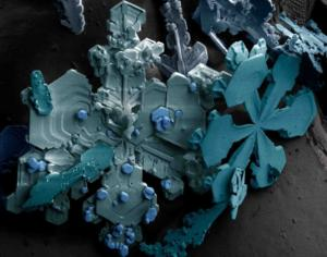 snowflakes seen by sem